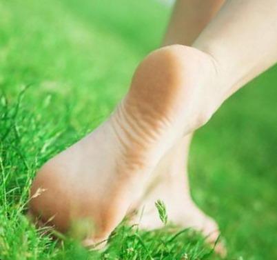 Dermatologija kojoms